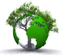 environnement et dev